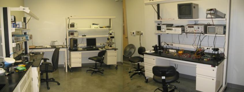 lab-picture2jpg